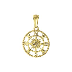 Pendente Acciaio inox Rivestimento PVD (colore oro) Cristallo Ancora corda nave
