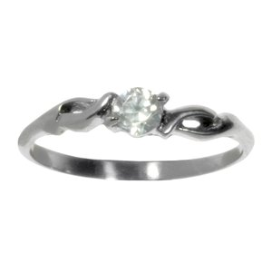 Stainless steel ring Stainless Steel zirconia