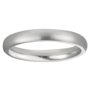Stainless steel ring Stainless Steel