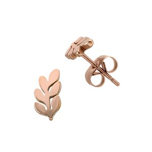 Earrings Stainless Steel PVD-coating (gold color) Leaf Plant_pattern