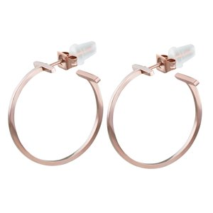 Earrings Stainless Steel PVD-coating (gold color)