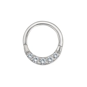 Pin Surgical Steel 316L zirconia