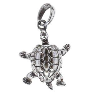 Tartaruga Chelone