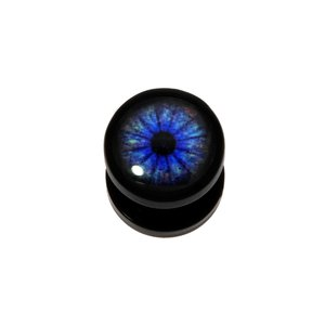 Plug Acrylic glass Epoxy Eye Iris Pupil