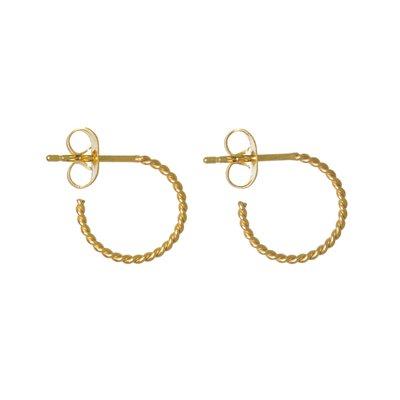 Ohrringe Chirurgenstahl 316L PVD Beschichtung (goldfarbig)