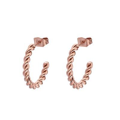 Orecchini Acciaio inox Rivestimento PVD (colore oro) Spirale