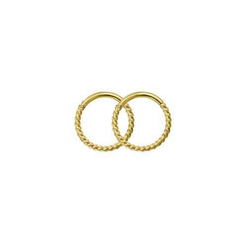 creolen Chirurgisch staal 316L PVD laag (goudkleurig) spiraal
