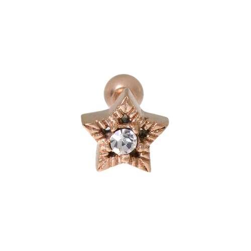 Piercing orecchio Metallo chirurgico 316L Zircone Rivestimento PVD (colore oro) Stella