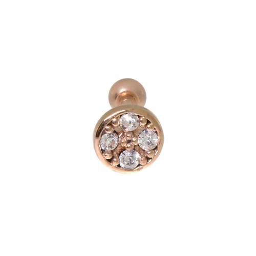 Piercing orecchio Metallo chirurgico 316L Zircone Rivestimento PVD (colore oro)